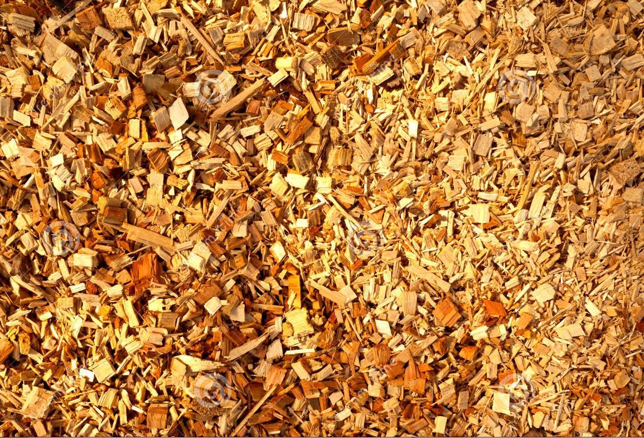 Biomassa: quanto è utile questa forma di energia rinnovabile rispetto alle altre?